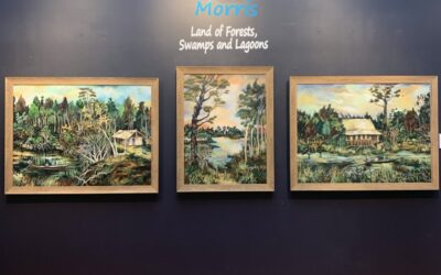 Land of the forests, swamps and lagoons   Anne Morris